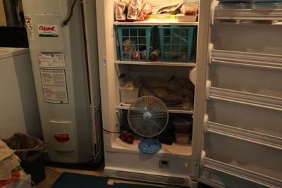 freezer fan